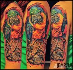 Татуировка на плече «рысь»