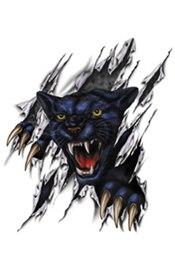 Цветной эскиз тату «Черная пантера разрывает когтями реальность»