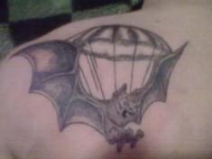 Летучая мышь и купол парашюта