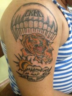 Татуировка на спине «Тигр, купол парашюта, солнце, горы»