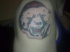 Голова медведя в берете